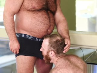 Bears - Brad Kalvo and Russell Tyler